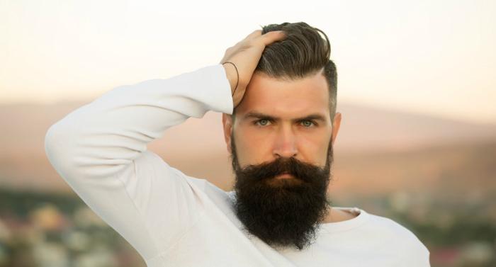 beard straightener